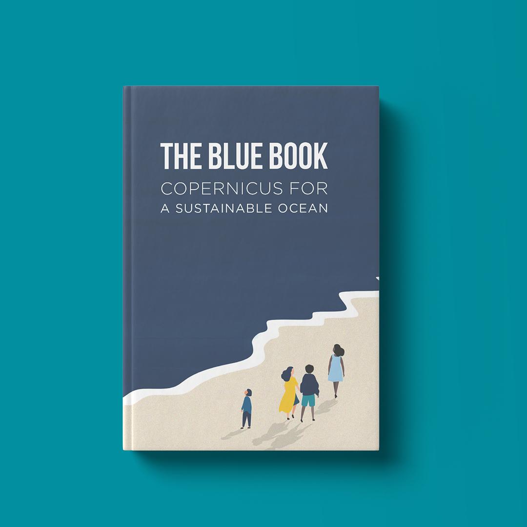 Livre relatant de tous les aspects des océans, qu'ils soient économiques environnementaux ou politique. Création de la mise en page du graphisme et des illustrations du livre. Toulouse.